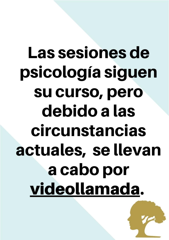 Las sesiones de psicología siguen su curso, pero debido a las circunstancias actuales, se llevan a cabo por videollamada._page-0001